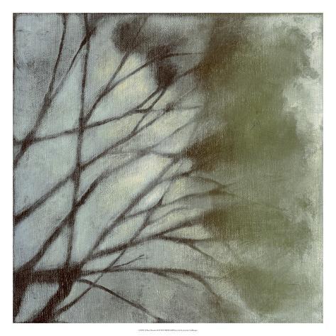 Diffuse Branches II Premium Giclee Print