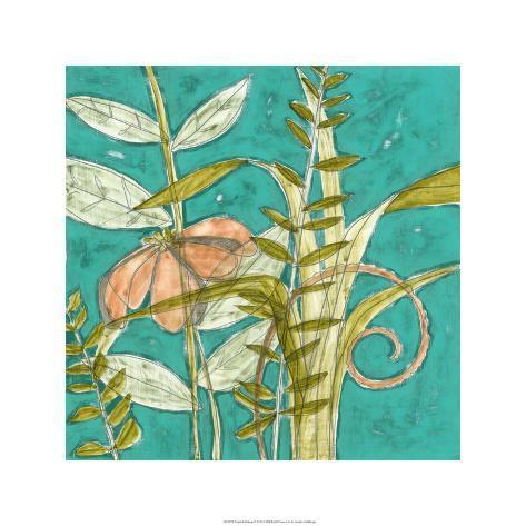 Tropical Melange II Limited Edition
