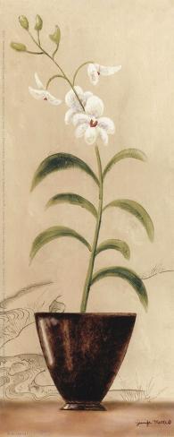 Asian Orchid I Art Print