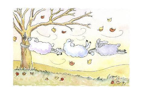 Three Sheep Giclee Print