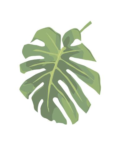 Philodendron 1 Art Print