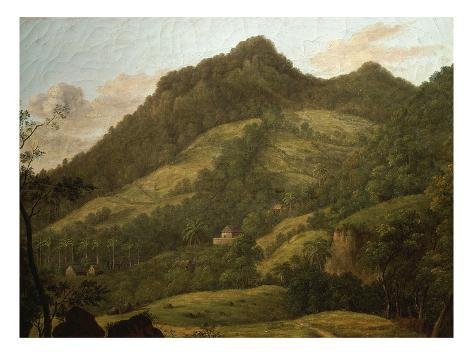 Martinique, West Indies, Late 18th Century Stretched Canvas Print