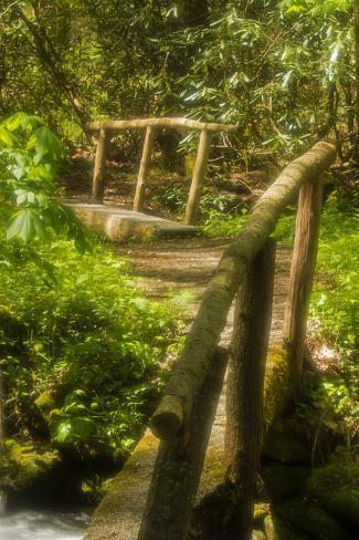 Footbridges, Cosby Nature Trail Valokuvavedos