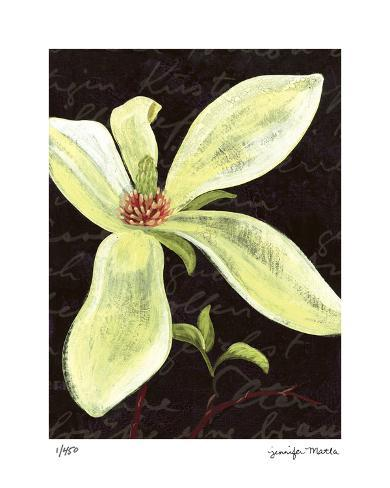 Magnolia Stampa giclée