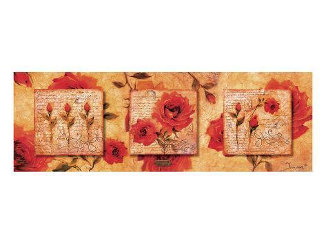 Roman Rose Gallery-Fallon Art Print