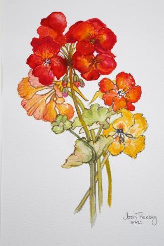 Geranium and Nasturtiums, 2014 Giclee Print