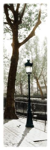 Lamppost Stretched Canvas Print