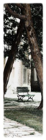 Park Bench Stretched Canvas Print