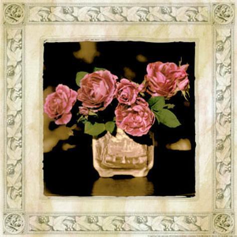 Imperial Rose II Framed Art Print