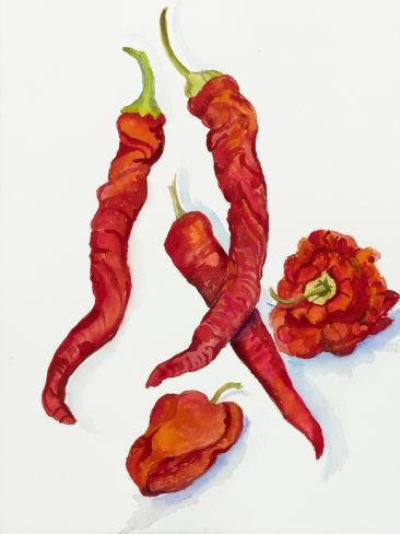 Peppers Very Hot Giclée-vedos