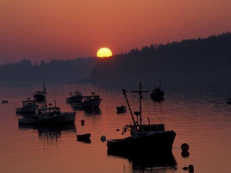 Lobster Boats in Harbor at Sunrise, Stonington, Maine, USA Photographic Print