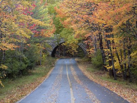 Road Through Acadia National Park in the Fall, Maine, Usa Photographic Print