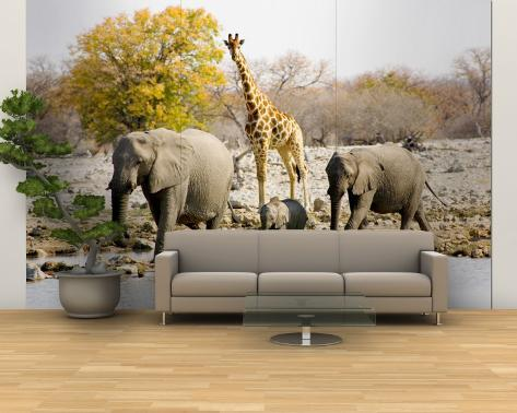 African Elephants and Giraffe at Watering Hole, Namibia Wall Mural – Large