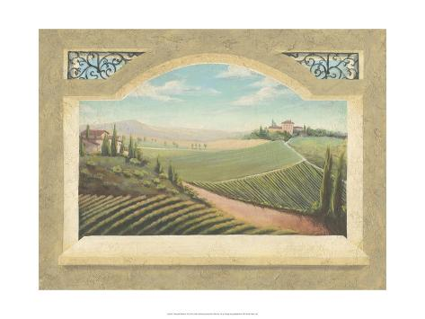 Vineyard Window I Art Print
