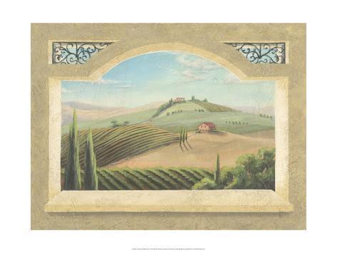 Vineyard Window III Art Print