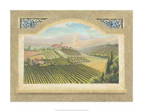 Vineyard Window IV Giclee Print