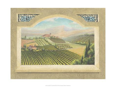 Vineyard Window IV Art Print