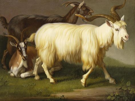 Billy Goats Giclee Print