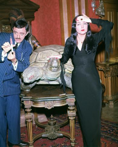 John Astin, The Addams Family (1964) Photo