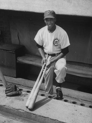 Chicago Cub's Ernie Banks, Stooping in the Dug-Out Holding Two Bats Against Cincinnati Reds Premium Photographic Print