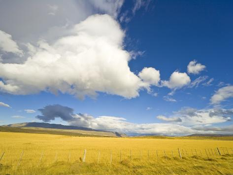Cumulus Clouds Over Golden Pampas in Chile Photographic Print