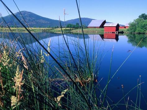 Fall River and Farm Buildings Near Glenburn, Mt. Shasta, California Photographic Print