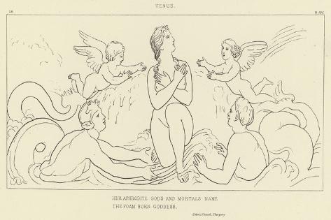 Venus Giclee Print