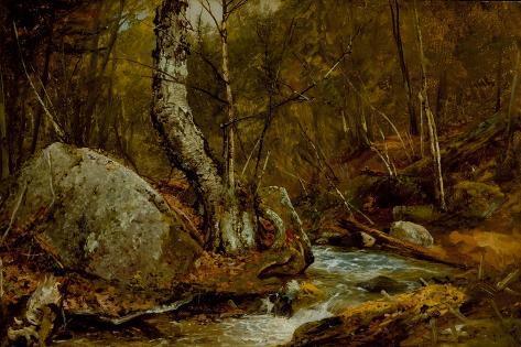 Woodland Interior, C.1850-55 Lámina giclée