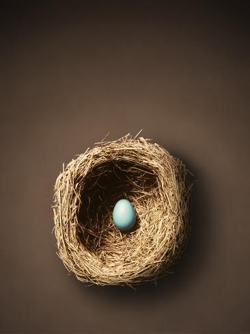 Single Egg in Nest Photographic Print