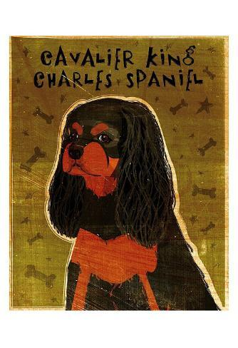 Cavalier King Charles (black and tan) Art Print