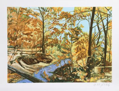 Forest Stream 7 Collectable Print