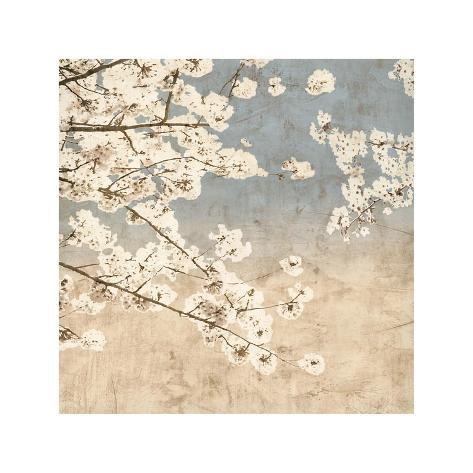 Cherry Blossoms II Giclee Print