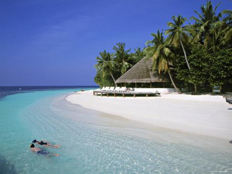 Tropical Beach at Maldives Photographic Print