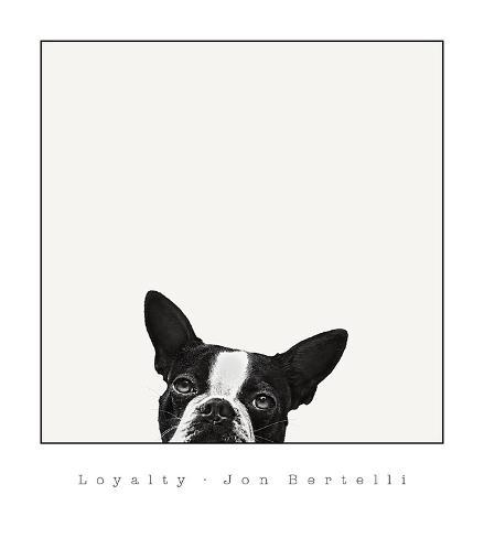 Loyalty Art Print