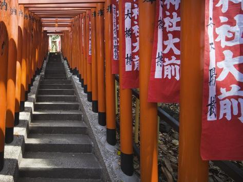 Line of torii gates at Hie Shrine Photographic Print