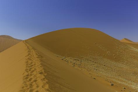 Human Footprints Along the Crest of Mountainous Dune 45 Photographic Print