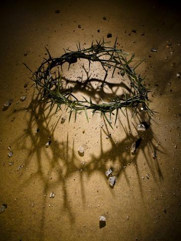 Crown of Thorns with Large Shadow and Pieces of Rock Photographic Print