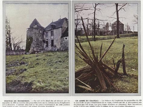 Chateau De Mondement, Un Arbre Du Chateau Stampa fotografica
