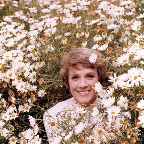 Julie Andrews Hour, Julie Andrews, 1972-1973 Photo