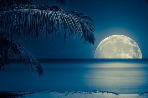 Beautiful Full Moon Reflected on the Calm Water of a Tropical Beach (Toned in Blue) Photographic Print