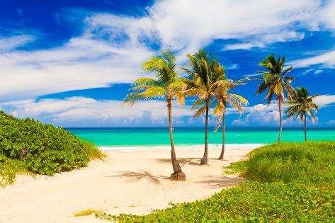 Beautiful Tropical Beach in Cuba Photographic Print