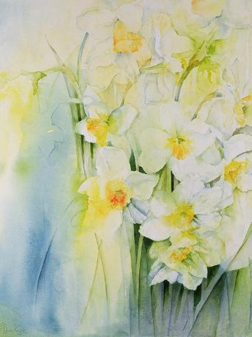 Narcissi and Freesia Stampa giclée