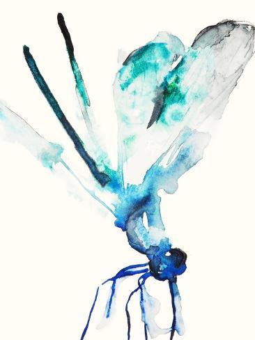 Blue & Green Dragonfly