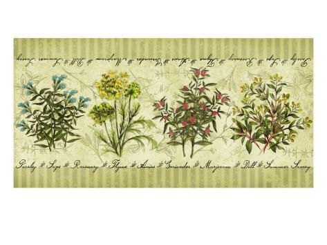 Herb Garden Giclee Print