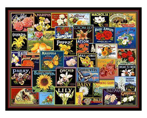 Vintage Flower Seed Packs Stampa giclée