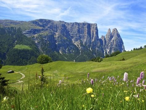 Seiser Alm, Trentino, South Tyrol, Italy Photographic Print