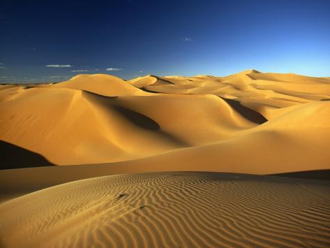 Sand Dunes in Sahara Photographic Print
