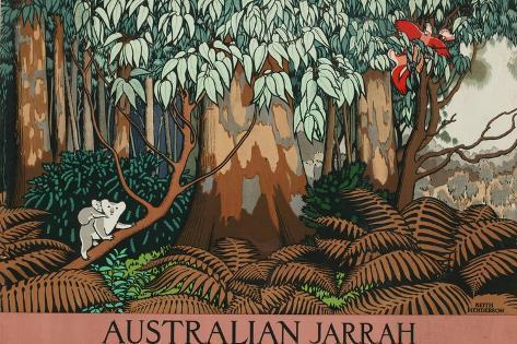 Australian Jarrah Giclee Print