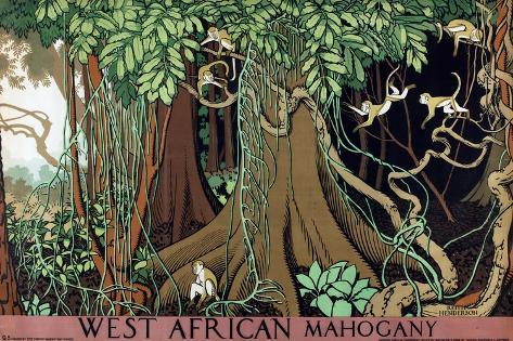 West African Mahogany Giclee Print