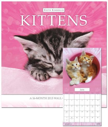 Keith Kimberlin Kittens - 2013 Calendar Calendars